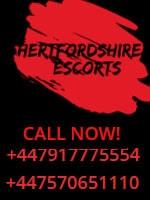 Hertfordshire Escorts