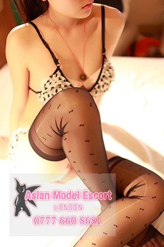 sakura Asian Model Escort Slim