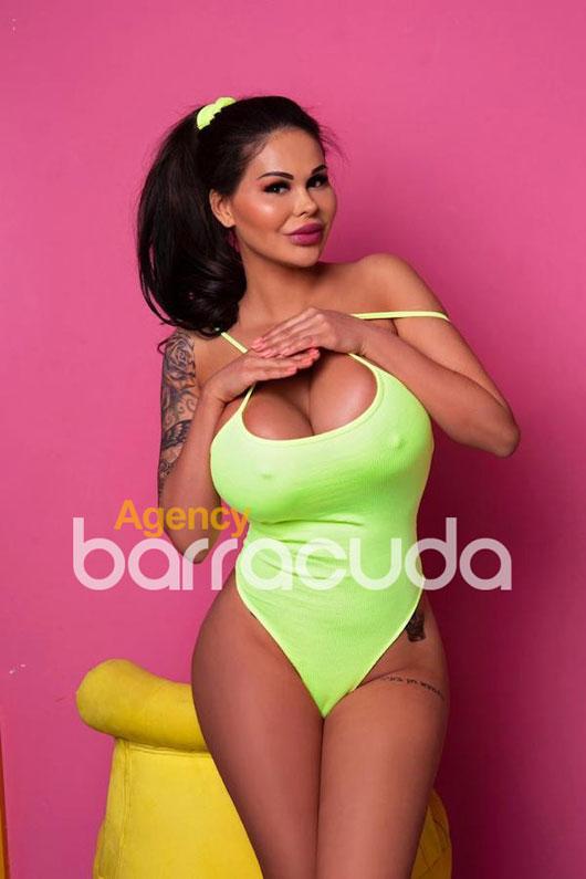 Sunny Agency Barracuda BRUNETTE