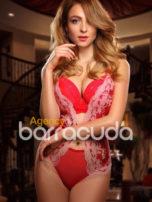 Dandelia Agency Barracuda BLUE