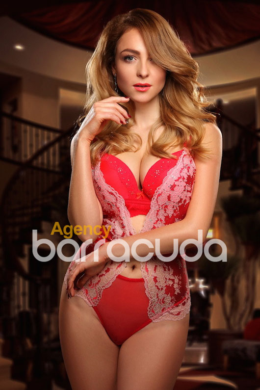 Dandelia Agency Barracuda BLUE
