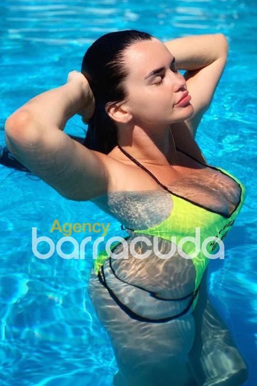 Mina Agency Barracuda PADDINGTON