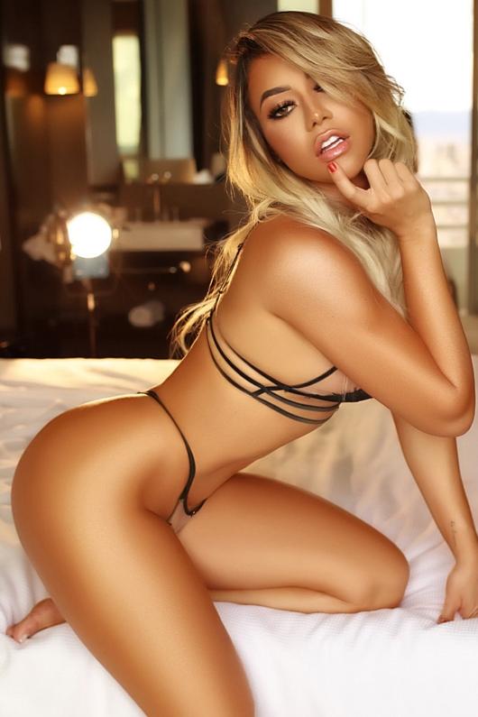 Pamela Lilyfields Latin Brazilian